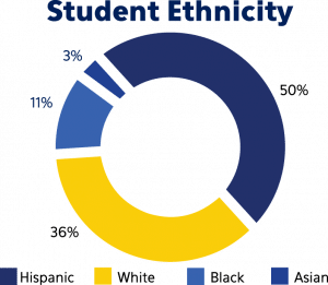 Graphic: Students at BVP are 50% hispanic, 36% white, 11% black, and 3% asian.