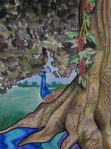 Serena Lincoln Watercolor Illustration
