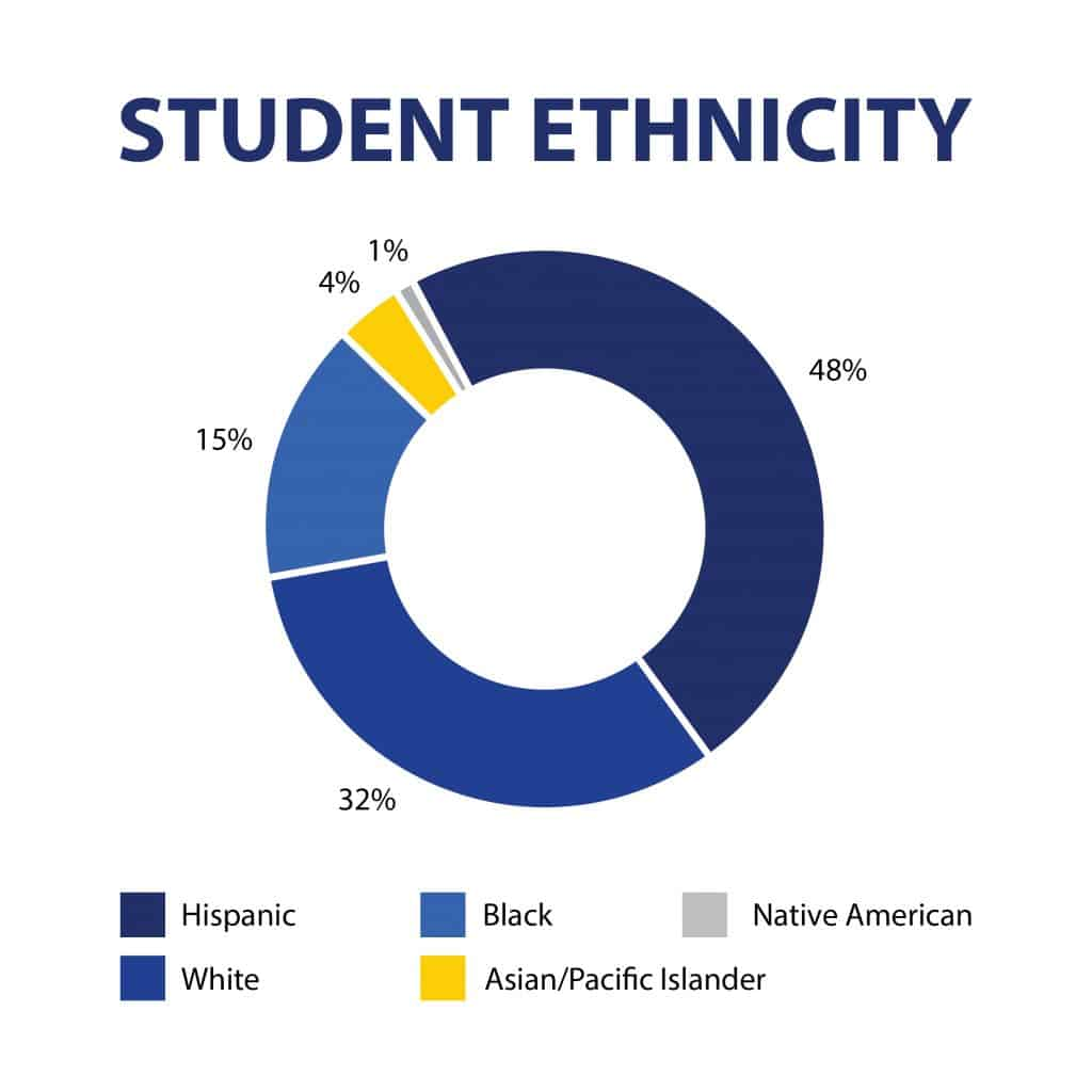 Pie chart showing the breakdown of student ethnicity