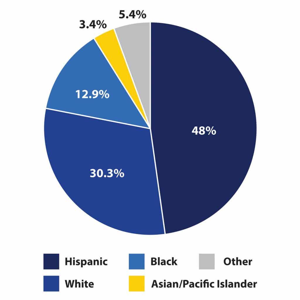 Pie graoh showing scholar ethnicity